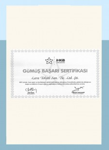 IHKIP Silver Success Certificate